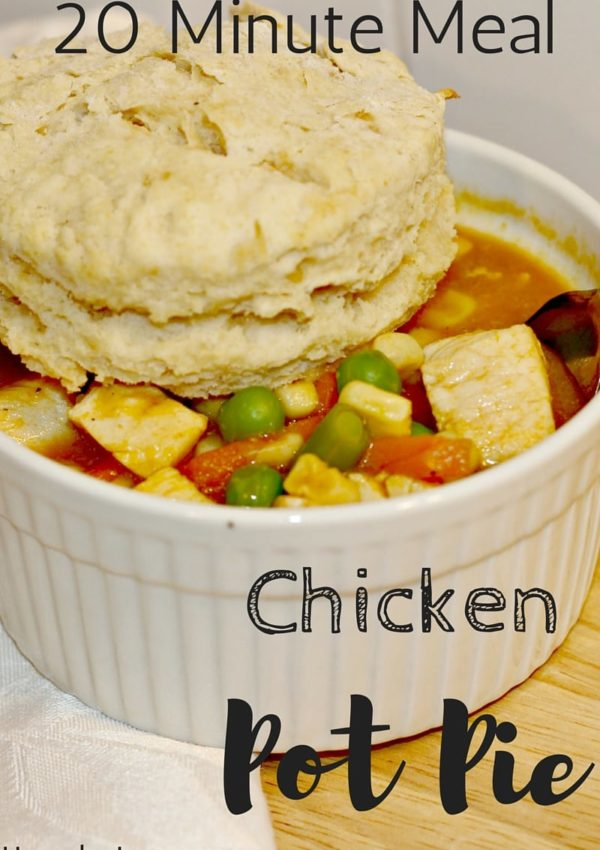 Quick and Easy Dairy Free Chicken Pot Pie