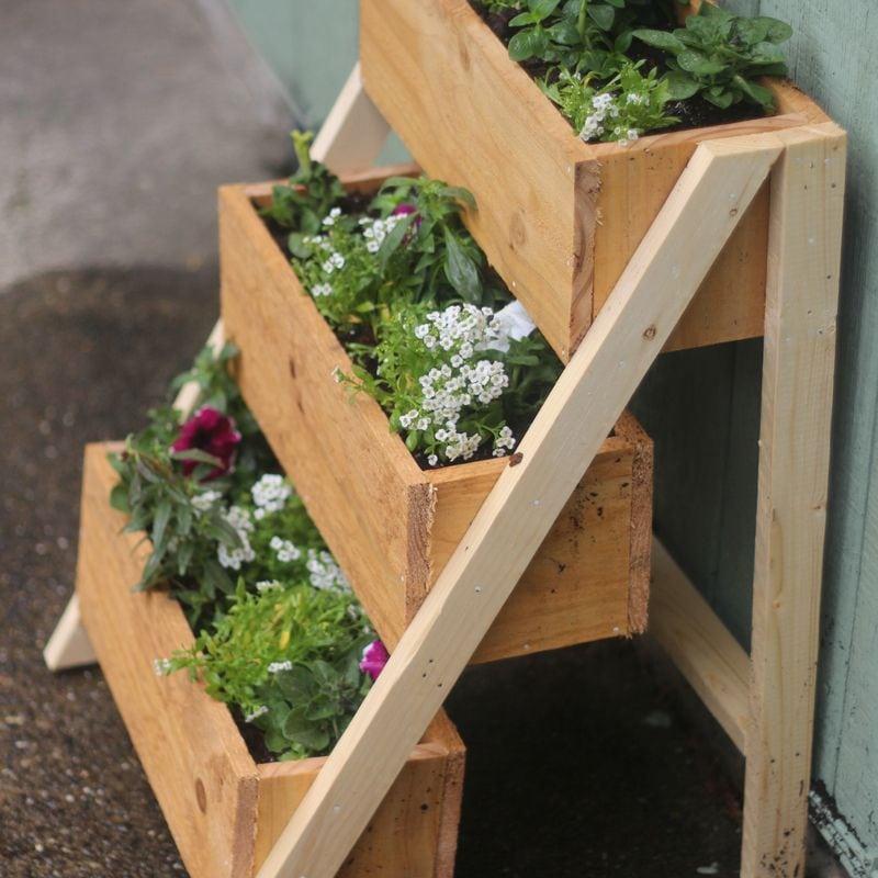 DIY wood planter box with petunia flowers.