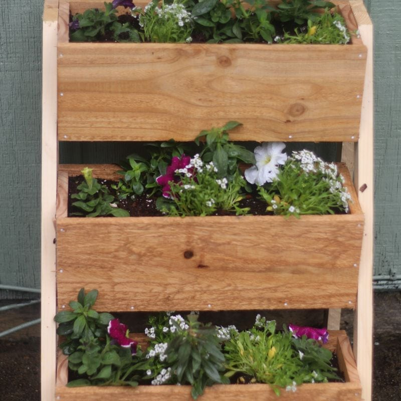 a 3 tiered DIY cedar planter box filled with purple and white petunia flowers.
