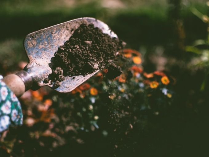 proper soil for your veggie garden