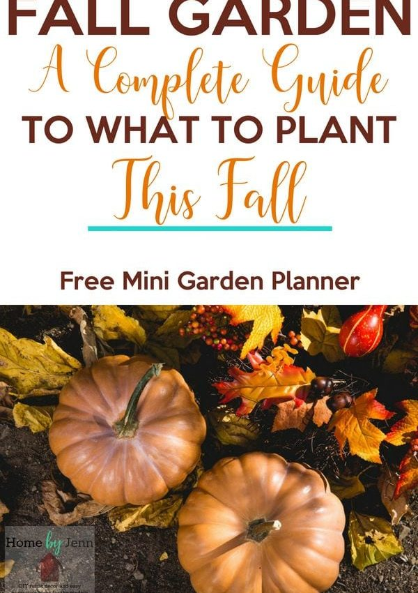 Fall Garden: A Complete Guide To What To Plant In The Fall