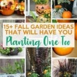 Amazing Fall Garden Ideas That Will Have You Planting One Too