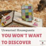Unwanted Houseguests You Won't Want To Discover