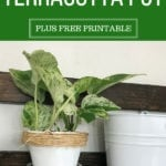 How To Paint Terracotta Pots With A Twist
