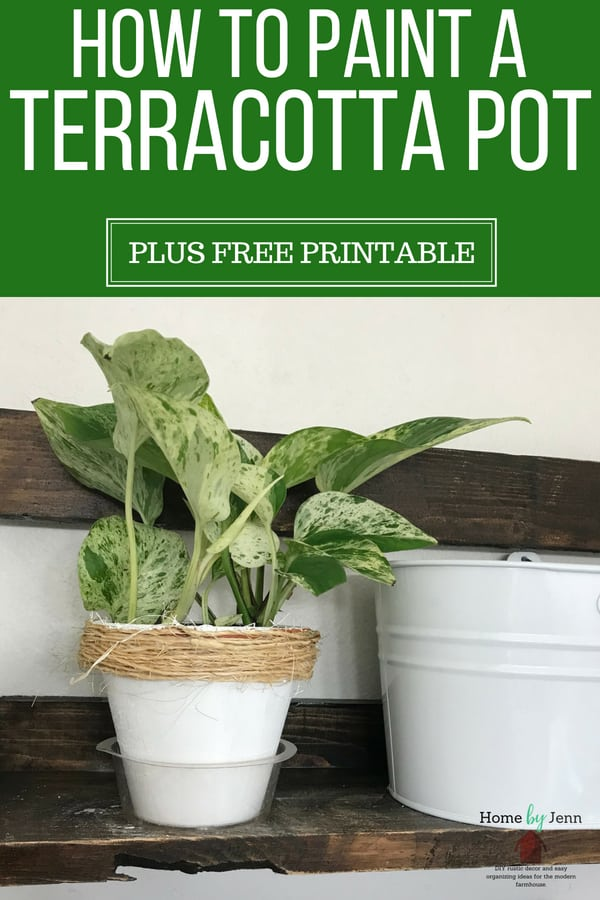 Update old terracotta pots with a few supplies at home and learn how to paint a terracotta pot. 