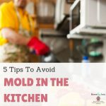 5 Tips To Avoid Mold In The Kitchen