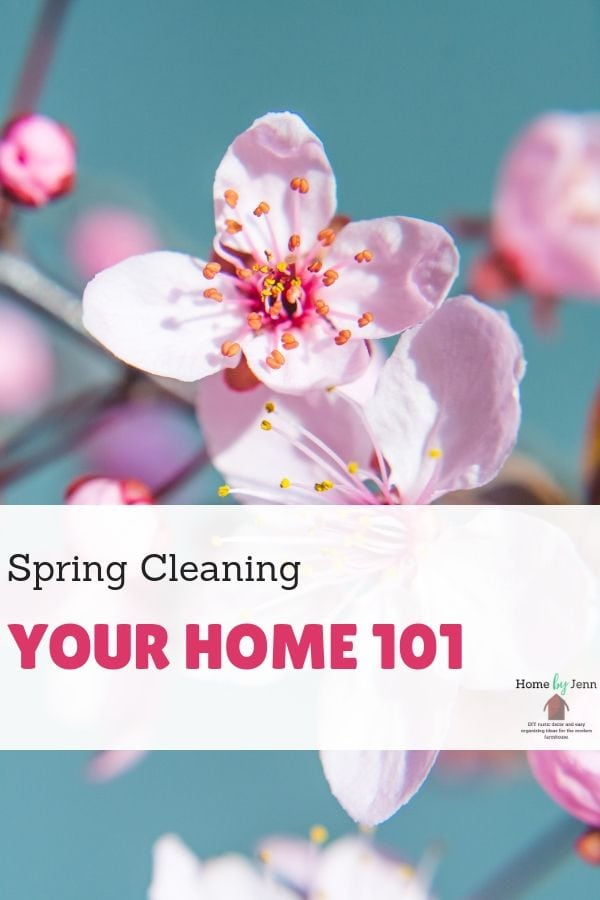 Spring Cleaning Your Home 101