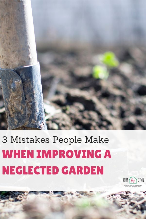 3 Mistakes People Make When Improving A Neglected Garden
