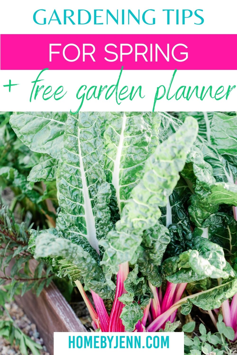 Growing a garden can be so rewarding check out these Spring Gardening Tips to help your garden thrive this year. These Gardening Tips For Spring are easy to follow and will help you grow more in your home garden. via @homebyjenn