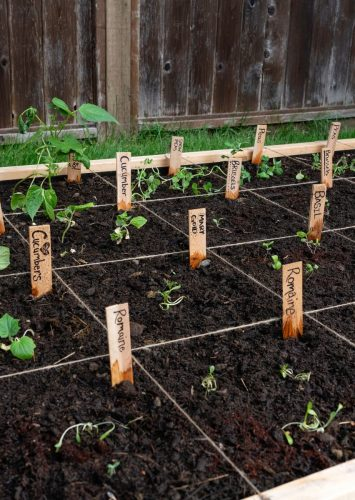 Simple Tips for Square Foot Gardening Planning