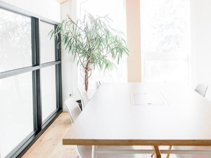 table with green plant in corner