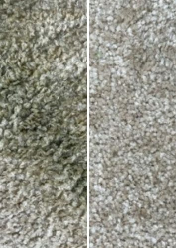 Natural Carpet Stain Remover: How To Get Stains Out Of Carpet