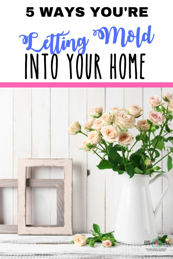 5 Ways You're Letting Mold Into Your Home via @homebyjenn