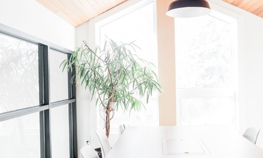 Clean and bright windows in a dining room