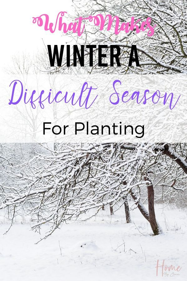 What Makes Winter A Difficult Season For Planting