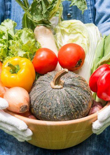 Vegetable Garden Tips for a Bountiful Season