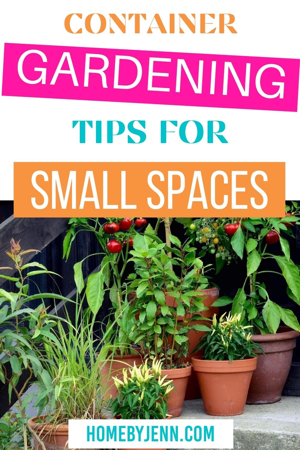 Grow your favorite plants in containers with these container gardening tips. These gardening tips are perfect for those with small spaces. #gardeningtips #gardening #gardentips #containergardening via @homebyjenn