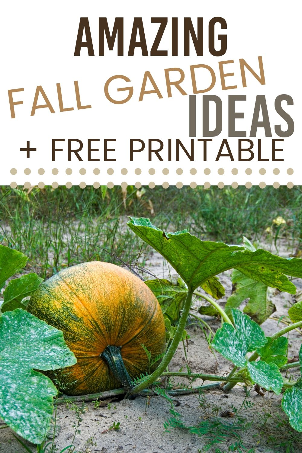 Bring your garden to the next level with some fall garden ideas. Extend your vegetable growing season with a fall garden. #garden #fallgarden #gardening #fallgardening via @homebyjenn
