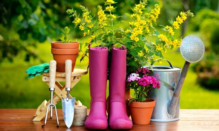 rubber boots, a hand shovel, a hand rake, a bench, and a few potted plants