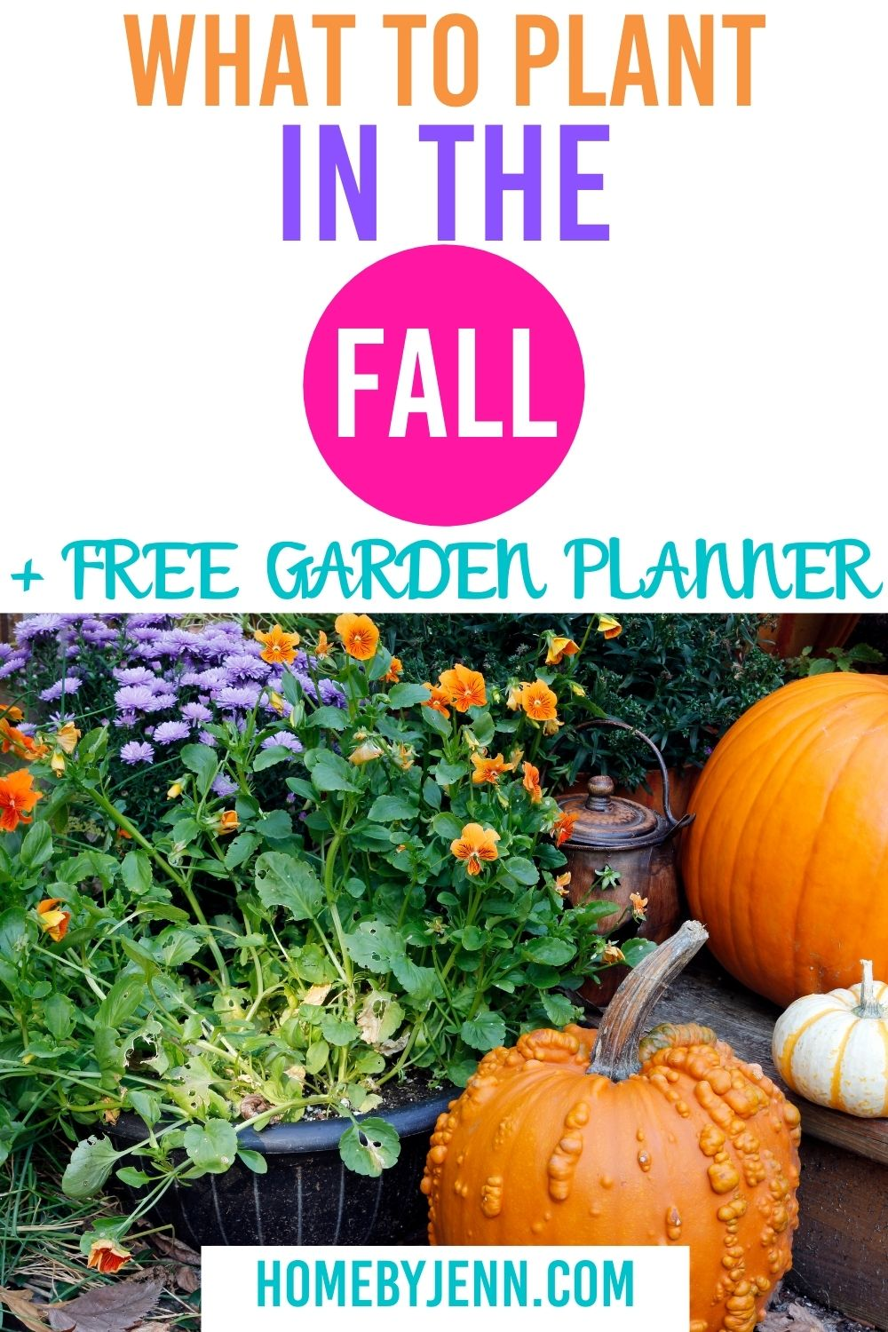Plant a fall garden that will thrive by following the complete fall garden guide to what to plant this fall. #fall #fallgardening #fallgarden #squarefootgarden #garden via @homebyjenn