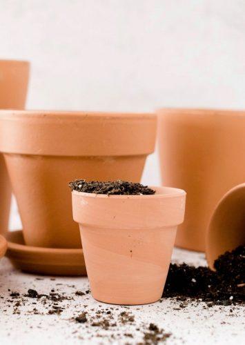 My Fall Gardening List + Checklist