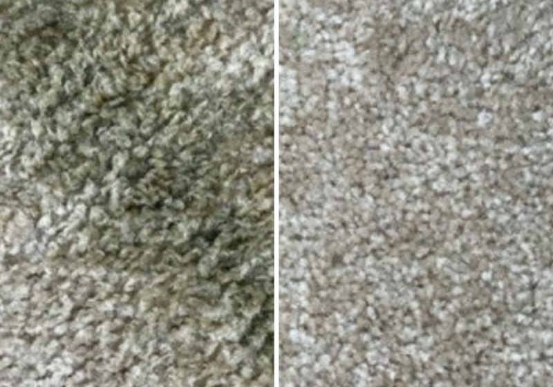 natural carpet stain remover before and after stains